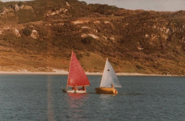 , 1981 (1)